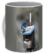 Mountain Bluebirds Mating Coffee Mug