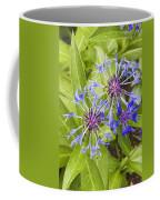 Mountain Bluet Flowers Coffee Mug