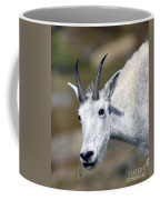 Mountain Goat Feeding Coffee Mug