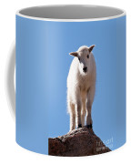 Mountain Goat Kid On Mount Evans Coffee Mug