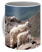 Mountain Goat Nanny And Kid Enloying The View On Mount Evans Coffee Mug
