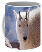 Mountain Goat Portrait On Mount Evans Coffee Mug