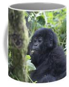 Mountain Gorillas Coffee Mug