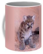 Mountain Lion Cub Coffee Mug