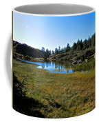 Mountain Marshes 1 Coffee Mug
