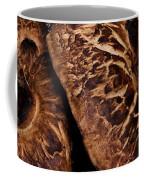Mountain Mushrooms   #3670 Coffee Mug