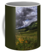 Mountain Storm Coffee Mug