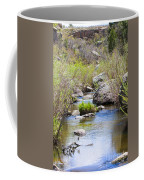 Mountain Stream In Castlewood Canyon State Park Coffee Mug