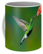 Mountain Velvetbreast Coffee Mug