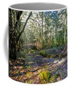 Mountain Walk 3 Coffee Mug