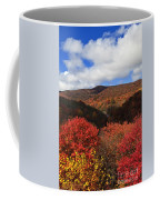 Mountains At Graveyard Fields Coffee Mug