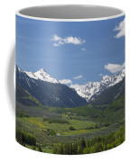 Mountains Co Grouse - New York 2 Coffee Mug