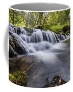 Mountian Water Coffee Mug