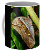 Mournful Owl Butterfly Coffee Mug