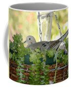 Mourning Dove Coffee Mug