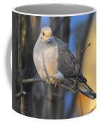 Mourning Dove On Limb Coffee Mug