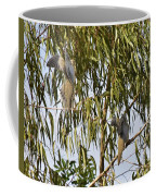 Mourning Doves Landing In Eucalyptus  Coffee Mug