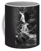 Mouse Creek Falls Coffee Mug