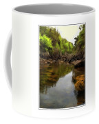 Mouth Of The Brook - Calm - Shallow Water Coffee Mug