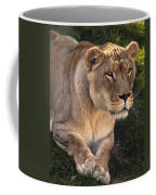 Moving In Coffee Mug