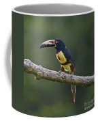 Mr. Colorful.. Coffee Mug