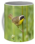 Mr Yellowthroat Coffee Mug