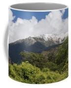 Mt. Aspiring National Park Mountains Coffee Mug