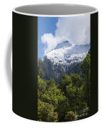 Mt. Aspiring National Park Peaks Coffee Mug