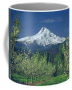 1m5125-mt. Hood In Spring Coffee Mug