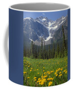1m3613-mt. Patterson And The Snowbird Glacier Coffee Mug