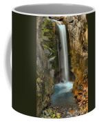 Mt Rainier Waterfall Coffee Mug