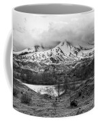 Mt. St. Helen's 2 Coffee Mug