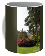 Muckross Garden In Spring Coffee Mug