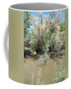 Muddy River Coffee Mug