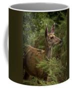 Mule Deer On Alert Coffee Mug
