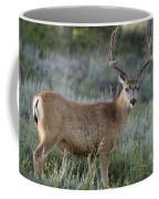 Muley Buck In Velvet Coffee Mug