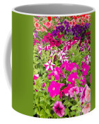 Multi-colored Blooming Petunias Background Coffee Mug