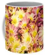Multi-colored Daisies Coffee Mug