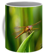 Multicolored Dragonfly Coffee Mug