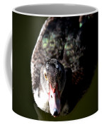 Muscovy 14-2 Coffee Mug