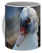 Muscovy Portrait 2013 Coffee Mug