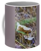Mushroom 1 Coffee Mug