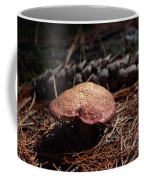 Mushroom And Pine Cone Coffee Mug