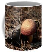 Mushroom And Pine Cone Neighbors Coffee Mug