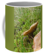 Mushroom In Grass Coffee Mug