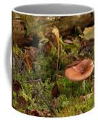 Mushroom N Moss Coffee Mug