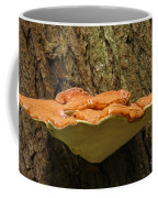 Mushroom Plate Coffee Mug