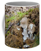 Mushroom Twins - As Youngsters Coffee Mug