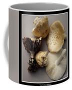 Mushrooms With Watercolor Effect 5 Coffee Mug