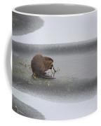 Muskrat Meal On Ice Coffee Mug